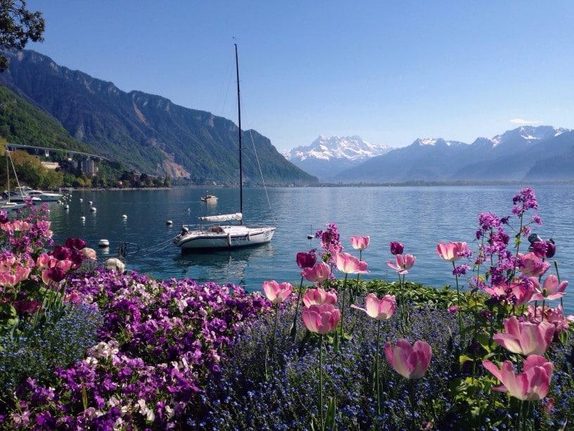 Segelboot auf einem schweizer See